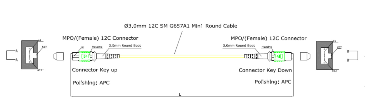 Fiber Hope good quality mpo connector widely applied for WANs-1