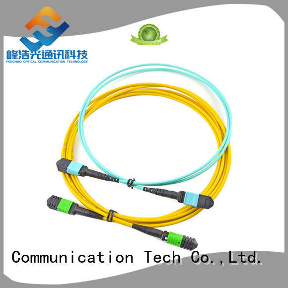 professional mpo cable popular with LANs