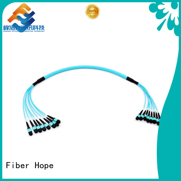 Fiber Hope mpo cable cost effective WANs